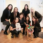 Studio 904 Team with Santa Dog